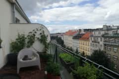 House sit in Prague, Czech Republic