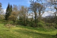House sit in Ruthin, United Kingdom