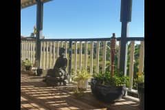 House sit in Sunshine Coast, QLD, Australia
