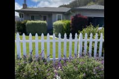 House sit in Pacifica, CA, US