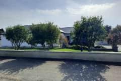 House sit in Ardee, Ireland