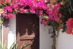 House sit in La Herradura, Spain