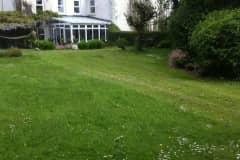 House sit in Dundalk, Ireland