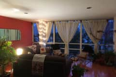 House sit in Mexico City, Mexico