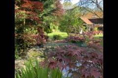 House sit in Boxford, United Kingdom