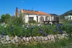 House sit in Freginals, Spain