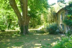 House sit in Gignac, France