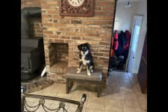 House sit in Pipestone, MN, US