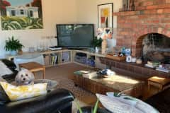 House sit in Lower Hutt, New Zealand