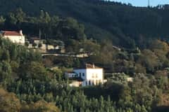 House sit in Espinhal, Portugal