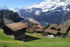 House sit in Wengen, Switzerland