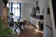 House sit in Rotterdam, Netherlands
