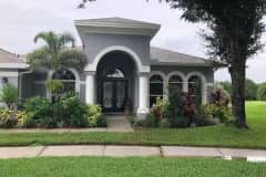 House sit in Tampa, FL, US