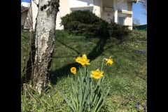 House sit in Saint-Genis-Pouilly, France