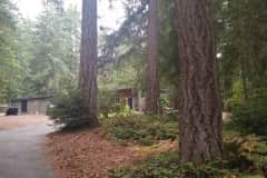 House sit in Port Orchard, WA, US