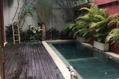 House sit in Canggu, Indonesia