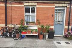 House sit in Dublin, Ireland