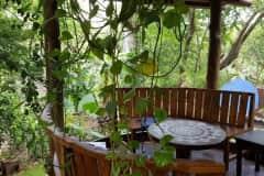 House sit in Liberia, Costa Rica