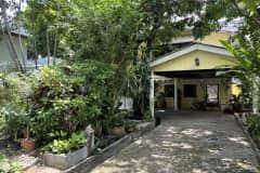 House sit in Bangkok, Thailand
