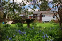 House sit in Bloomington, IN, US