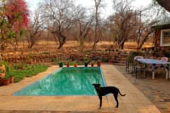 House sit in Hoedspruit, South Africa