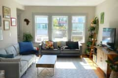 House sit in Boston, MA, US