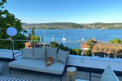 House sit in Zürich, Switzerland
