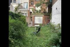 House sit in Antwerpen, Belgium