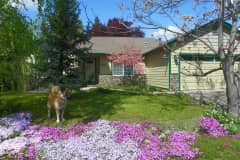House sit in Medford, OR, US