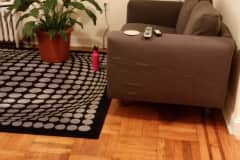 House sit in Brooklyn, NY, US