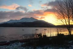 House sit in Taynuilt, United Kingdom