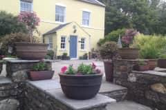House sit in Peel, Isle of Man