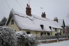 House sit in Saffron Walden, United Kingdom
