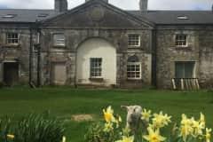 House sit in Mullingar, Mullingar, Ireland