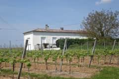 House sit in Castillon-la-Bataille, France
