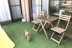 House sit in Ashiya, Japan