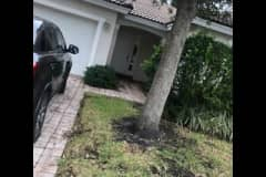 House sit in Fort Lauderdale, FL, US