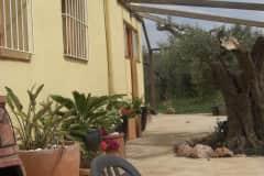 House sit in L'Aldea, Spain