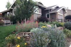 House sit in Fort Collins, CO, US