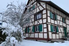 House sit in Allschwil, Switzerland