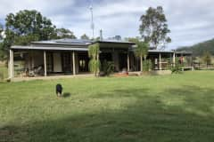 House sit in Canungra, QLD, Australia