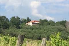 House sit in Tarano, Italy