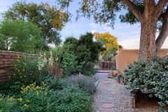 House sit in Los Ranchos de Albuquerque, NM, US