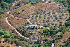 House sit in Frigiliana, Spain