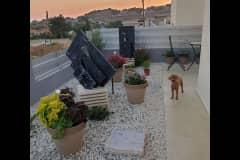 House sit in Pissoúri, Cyprus