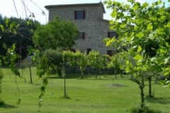 House sit in Rassina, Italy