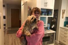 House sit in Vancouver, BC, Canada