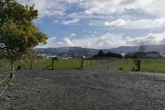 House sit in Dannevirke, New Zealand