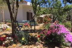 House sit in Palaióchora, Greece