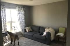 House sit in Cottage Grove, MN, US